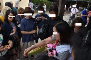 【象は乗るべき!】アユタヤ遺跡+観光地全部巡るツアーレポート【バンコクオススメ】