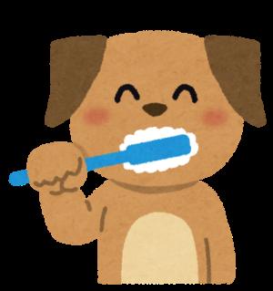 LUSHの歯磨き用タブレットが超便利!会社の昼休みに使ってみた!