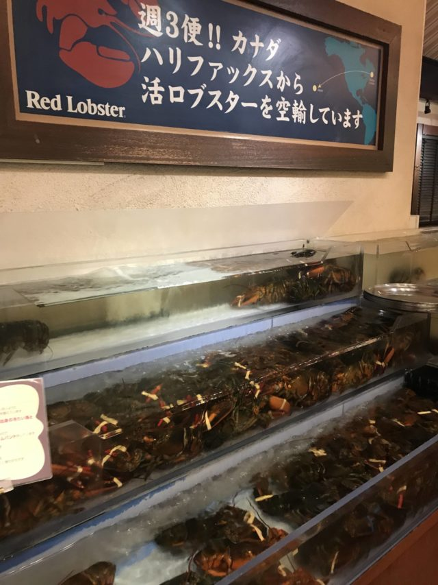 アメリカンビレッジのレッドロブスター沖縄北谷店でたらふく食べてみた。