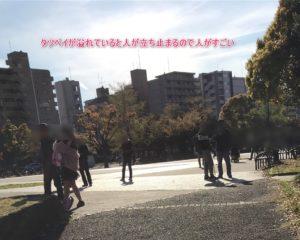 【ポケモンGO】横浜・反町公園でコミュニティデイを死ぬほど楽しんだゾ!~アチャモ編~